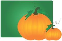 Pumpkins royalty free illustration