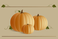 Pumpkins. A trio of festive pumpkins & leaves Stock Photography