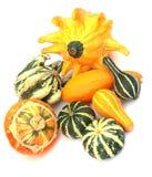 Pumpkins 2 Stock Images