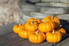 Pumpkins. Colorful miniature decorative pumpkins against rustic background Royalty Free Stock Images