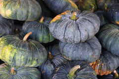 Pumpkins. A Pumpkins in market,Thailand Royalty Free Stock Photography