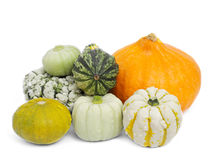 Pumpkins. Isolated on white background Royalty Free Stock Image