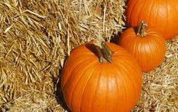 Pumpkins. Three pumpkins on a haystack Royalty Free Stock Image
