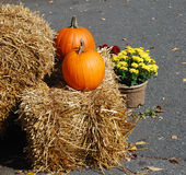 Pumpkins. Two pumpkins on a haystack Stock Images