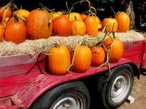 Pumpkins. On Trailer stock photos