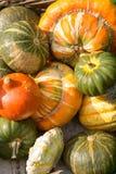 Pumpkins Royalty Free Stock Photo
