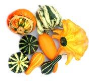 Pumpkins 3 Stock Image