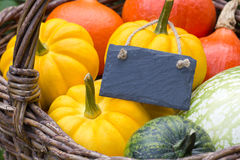 Free Pumpkins Stock Image - 45009731