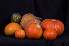 Pumpkins004 Fotos de Stock Royalty Free