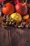 Pumpkins with acorns and leaves Royalty Free Stock Photo
