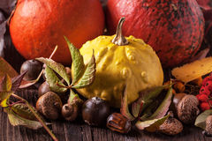 Pumpkins with acorns and leaves Royalty Free Stock Images