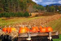 Free Pumpkins Adorn A Trailer At A Roadside Farm Royalty Free Stock Photography - 169128487