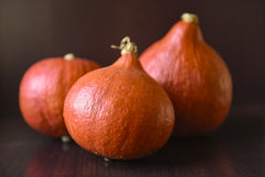 Pumpkins against light glassn background for copy space Royalty Free Stock Images