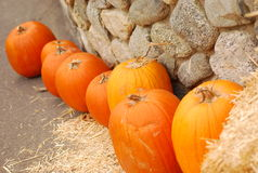 Pumpkins against stone wall Royalty Free Stock Photo