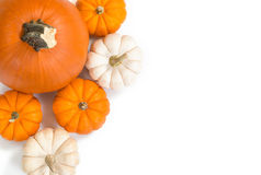 Pumpkins against white background Stock Photos