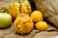 Pumpkins with apple and oranges Stock Image