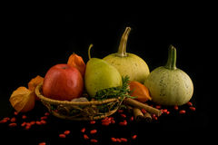 Pumpkins with apple, pear and cinnamon Stock Photo