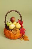 Pumpkins and Apples in Baskets on Wood Bench Stock Images