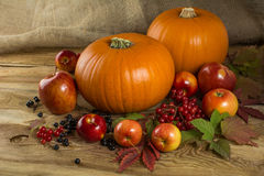 Pumpkins, apples, berries Royalty Free Stock Photo