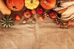 Pumpkins, apples, corn cobs and nuts with orange flowers on a jute bag. royalty free stock photo