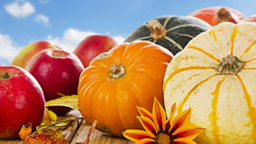 Pumpkins , apples and  fall leaves Stock Photo