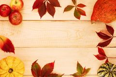 Pumpkins, apples and leaves. stock photos