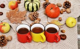 Free Pumpkins, Apples, Nuts,leaves, Cups And Sweater On Wooden Background. Stock Image - 160605021