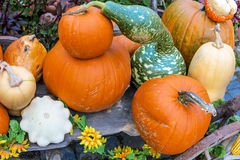 Pumpkins arrangement on handcart Royalty Free Stock Image