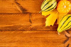 Pumpkins as decoration for thanksgiving day Royalty Free Stock Photo