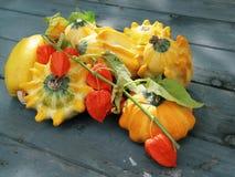 Pumpkins on autumn Stock Image