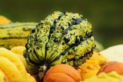 Pumpkins, Autumn, Autumn Decoration Royalty Free Stock Photos