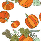 Pumpkins in autumn colors. Pumpkins, with fall autumn colors of orange, yellow, and red, isolated on white background Stock Image