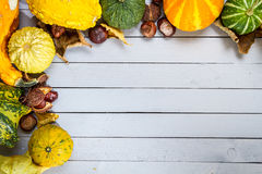 Pumpkins with autumn decoration royalty free stock photography