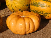 Pumpkins. At the autumn fair Royalty Free Stock Images
