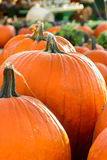 Pumpkins in Autumn. Pumpkins at a farmers market in Autumn Royalty Free Stock Image