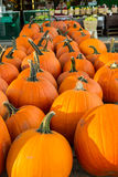 Pumpkins in Autumn Royalty Free Stock Photos