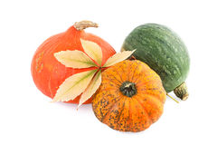 Pumpkins with autumn leaf Royalty Free Stock Photos