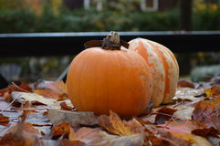 Pumpkins and autumn leafs in Canada Stock Photo
