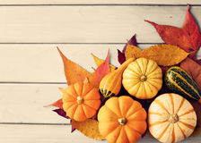 Pumpkins and autumn leafs Royalty Free Stock Images