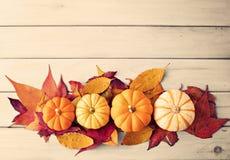 Pumpkins and autumn leafs Stock Photos