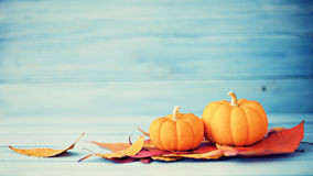 Pumpkins and autumn leafs Stock Photography