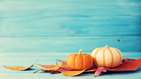 Pumpkins and autumn leafs Stock Image