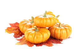 Pumpkins and Autumn Leaves Royalty Free Stock Images