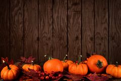 Pumpkin and leaves bottom border against dark wood. Pumpkins and autumn leaves bottom border against a grunge dark wood background Royalty Free Stock Images