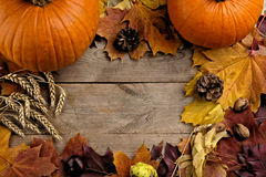 Pumpkins with autumn leaves seen bird's eye view for halloween day Royalty Free Stock Images