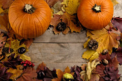Pumpkins with autumn leaves seen bird's eye view for thanksgiving day stock photography