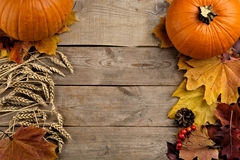 Pumpkins with autumn leaves seen bird's eye view for thanksgiving day on wooden planks royalty free stock photos