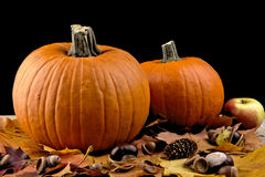 Pumpkins with autumn leaves for thanksgiving day on black background stock photography