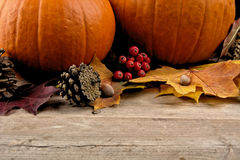Pumpkins with autumn leaves for thanksgiving day stock images