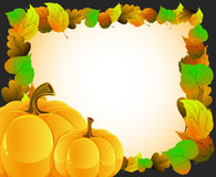 Pumpkins with  autumn leaves Royalty Free Stock Photos